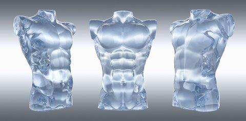 Three anatomical models of male torsos