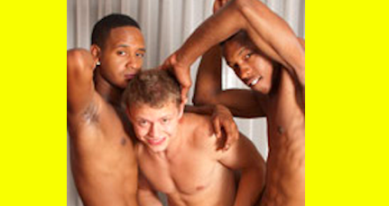 asian gay torrents sites